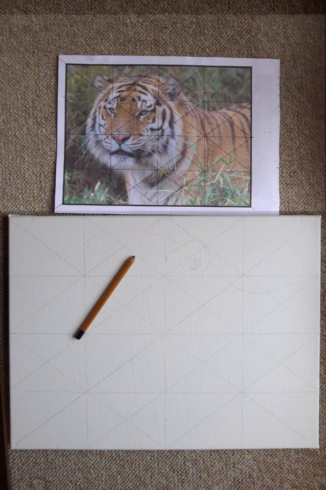 how to grid a canvas to transfer a photograph to it