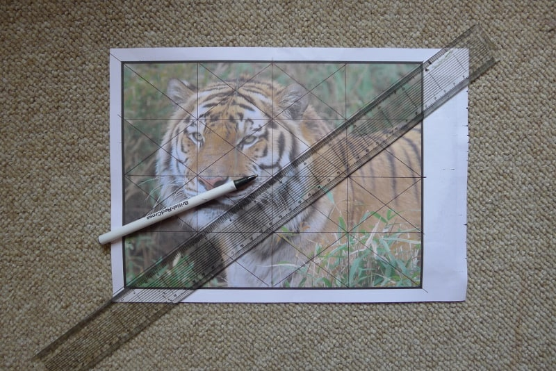 how to grid a photograph for a painting