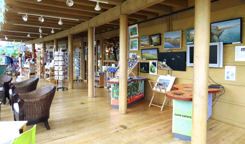 welsh wildlife centre pembrokeshire