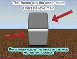 boxes the same colour optical illusion