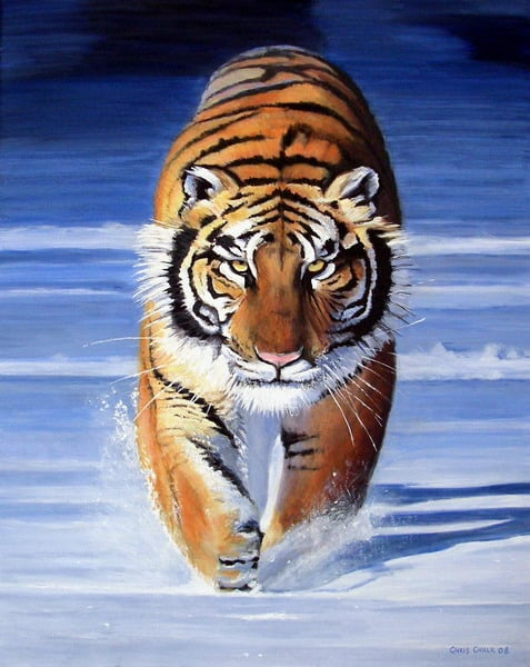 Siberian tiger painting in oils