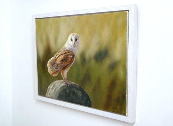 barn owl painting framed