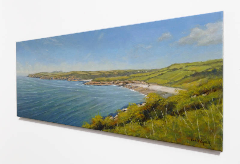 Abermawr painting close-up