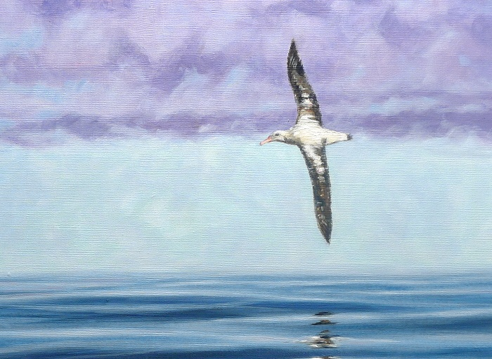 Albatross Painting close up
