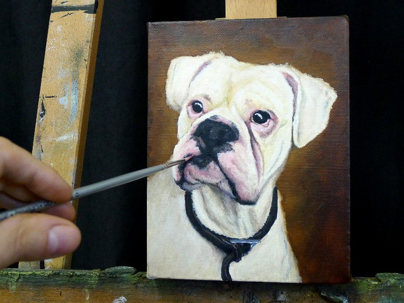 Boxer dog portrait painting on the easel