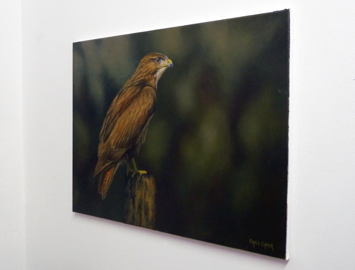 buzzard painting in oils