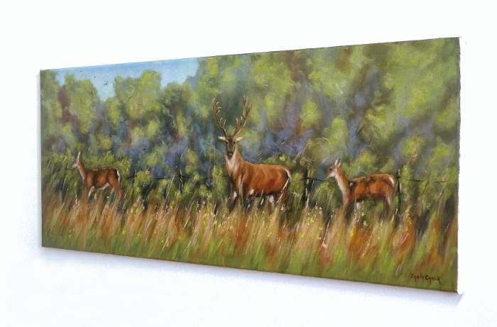 Deer Painting Hanging On The Wall
