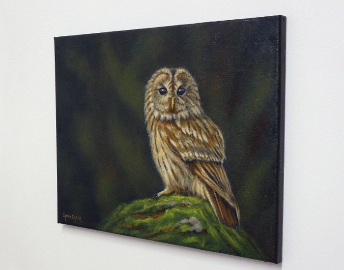 Tawny Owl Painting Hanging On The Wall