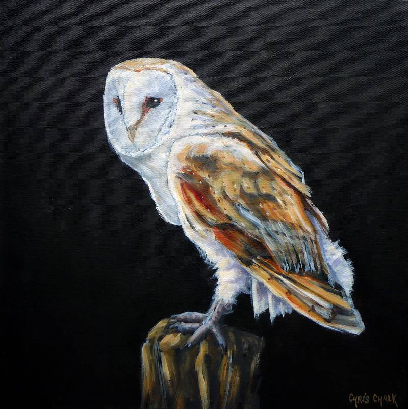 oil painting of a British barn owl sitting on a fence post