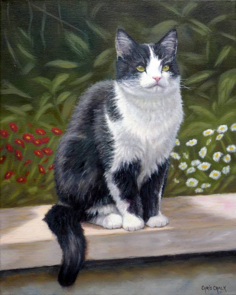 Cat painting oils