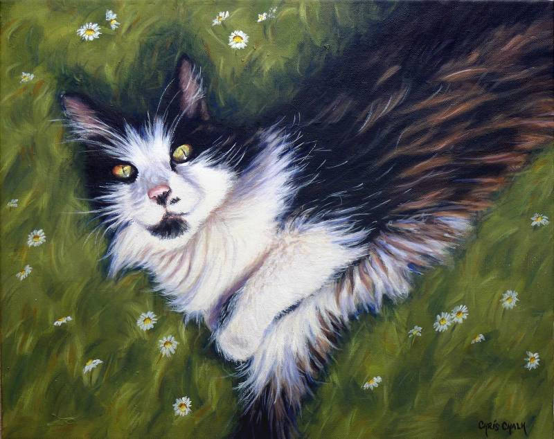 Cat painting in oils