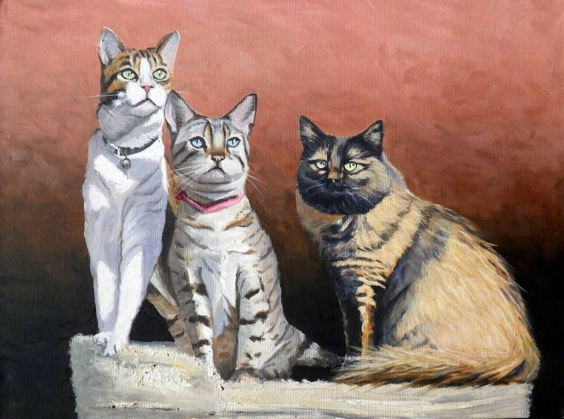 oil painting of three cats as a pet portrait