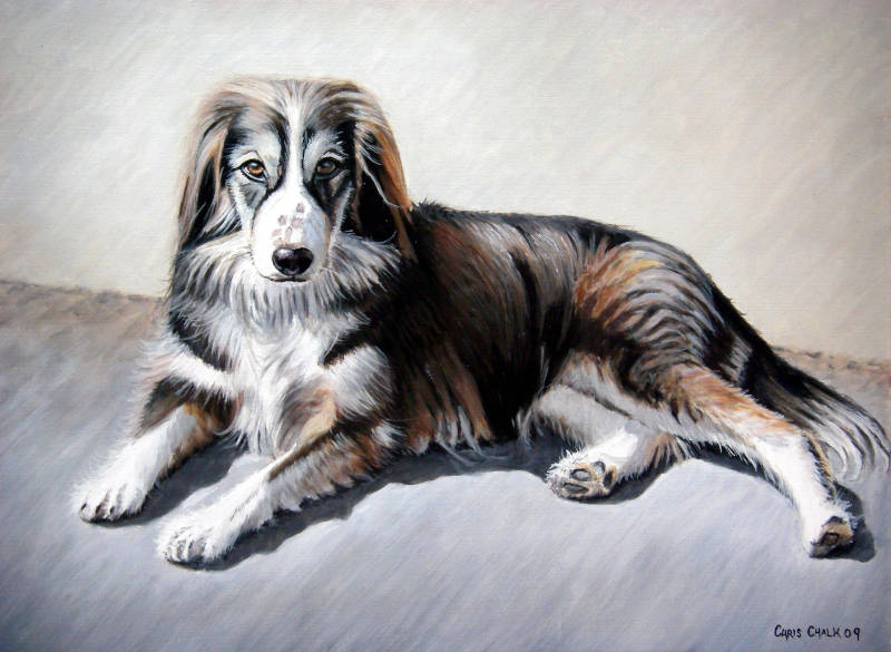 oil painting of a dog laying down