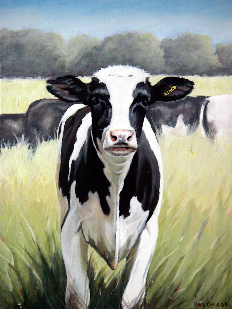 Painting of a Freisian Cow