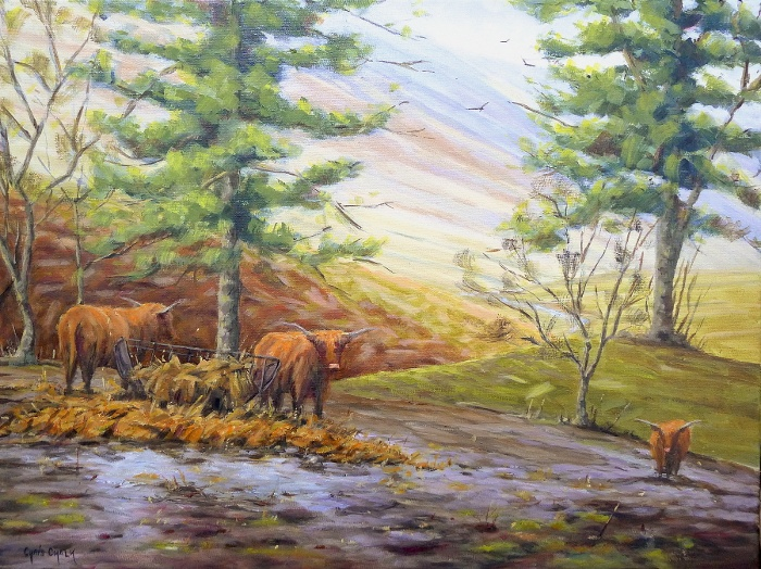 Painting of Highland Cows