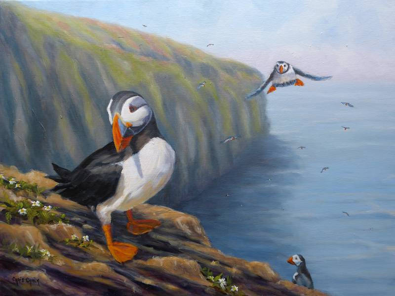 Puffin painting at The Wick, Skomer Island