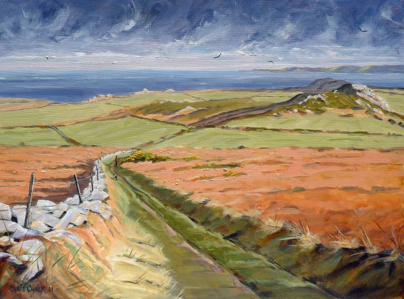 Painting of Garn Fawr in Pembrokeshire