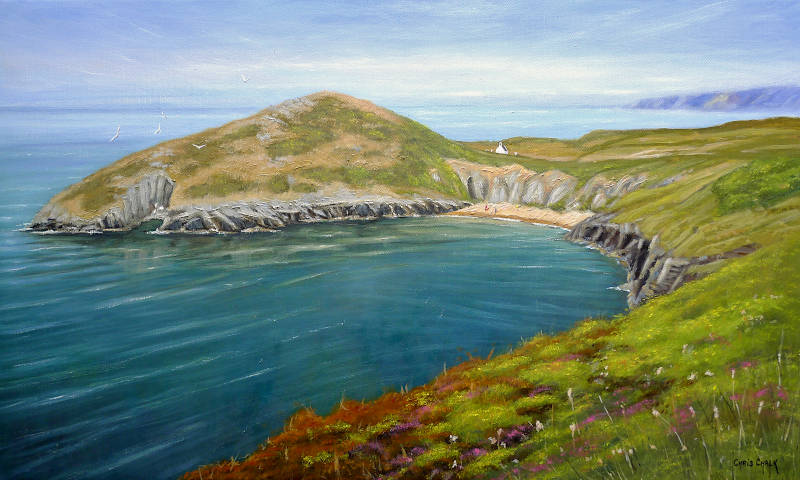 Mwnt summer flowers painting