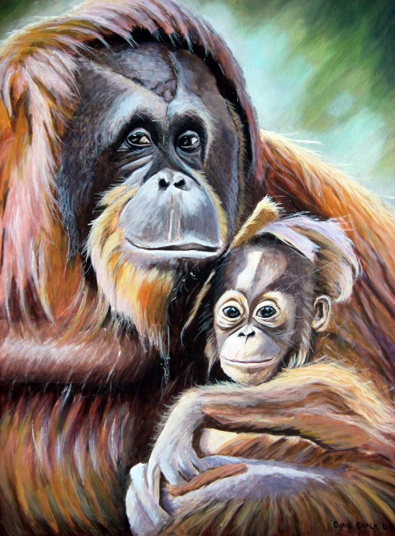 painting of a mother Orangutan holding a baby