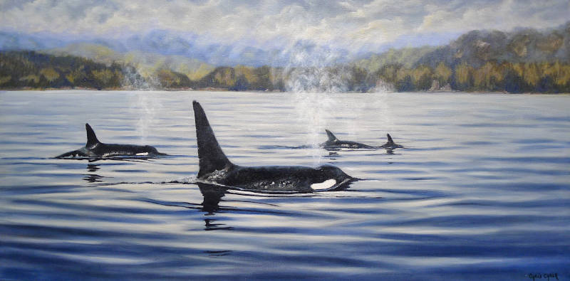 Orca Killer Whale painting