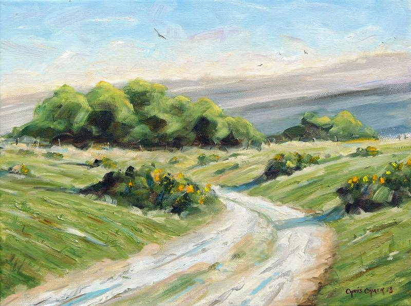 Preseli mountains painting