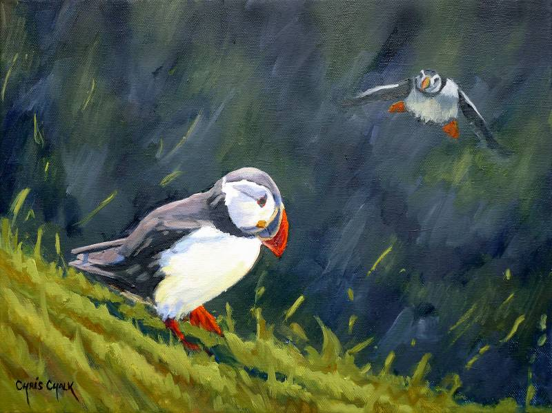 Flying puffin painting
