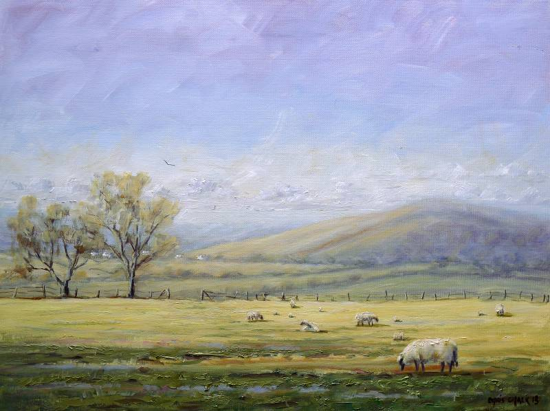 Welsh lambs painting
