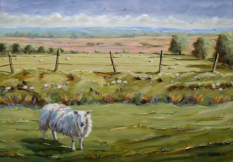 Welsh sheep painting