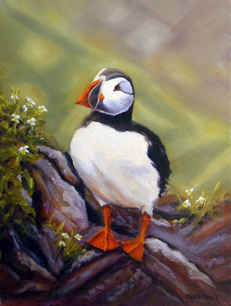 Puffin on rocks painting