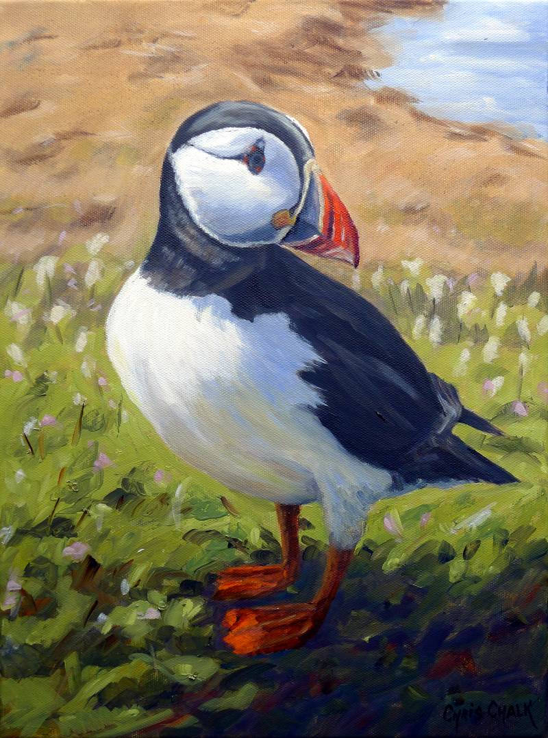oil painting of a puffin
