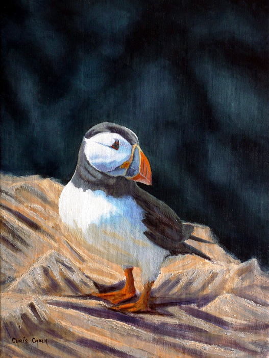 oil painting of a puffin standing on rocks