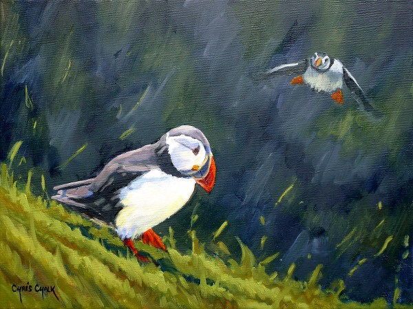 oil painting of two puffins from Skomer island