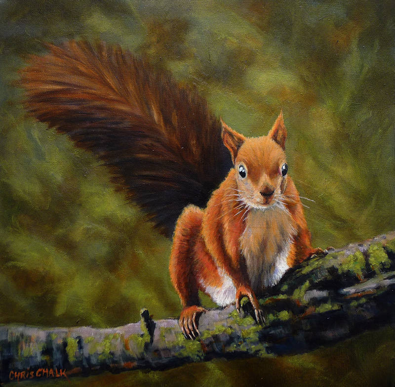 Recd squirrel painting