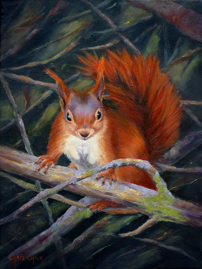 oil painting of a red squirrel in a tree