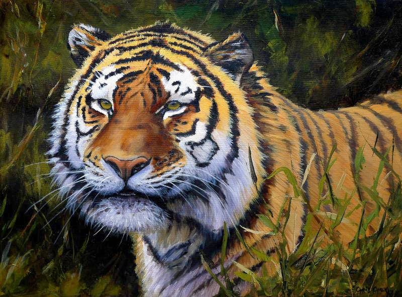 oil painting of a Tiger walking through bushes