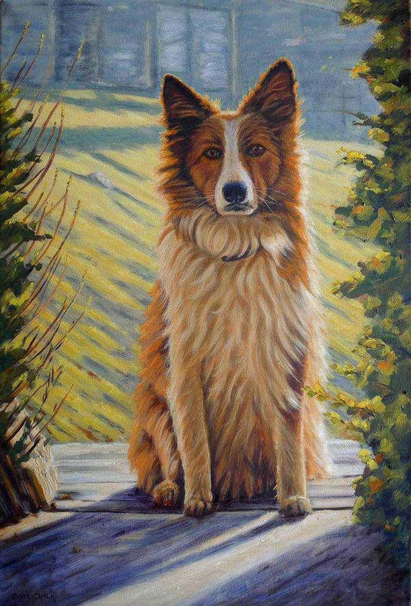 Welsh Sheepdog painting