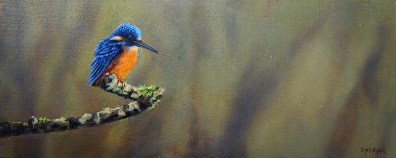 Kingfisher painting in oils